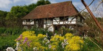 Bayleaf farmhouse garden Weald & Downland Museum