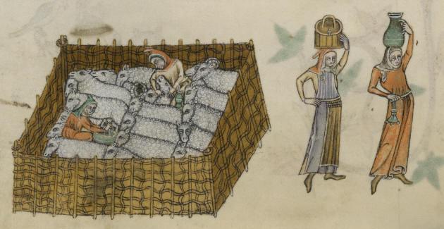 Sheepfold from the Luttrell Psalter