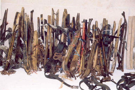 Part of the collection of horse tack before display...
