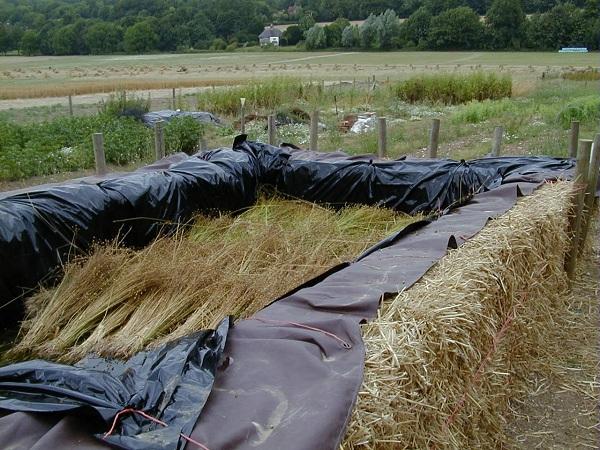 Flax retting - Weald & Downland Museum