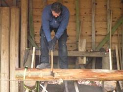 Julian in woodyard