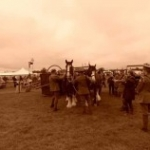 Weald & Downland Museum Shire horses at Edenbridge and Oxted show August 2015