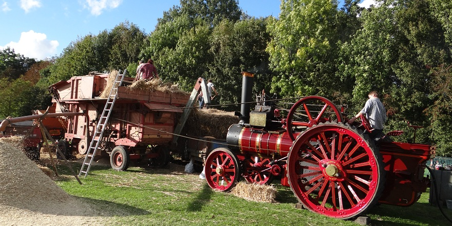 Steam threashing train Weald & Downland Museum Autumn Countryside Show