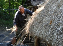 Thatching (9) small