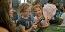 LiDAR children's day 16 July at the Weald & Downland Museum