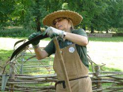 English Scything day (31) small