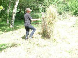 English Scything day (4) small