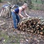 Stacking coppiced wood