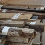 May Day Farm timbers are labelled and recorded
