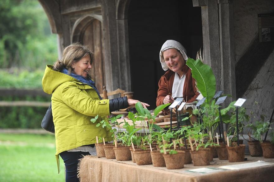 Museum herbs promo