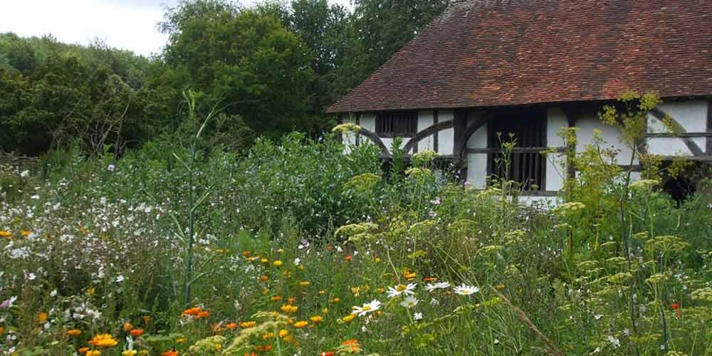 Bayleaf Garden at the height of summer