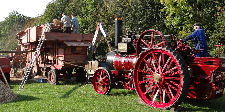Steam-powered threshing at the Weald & Downland Living Museum Autumn Countryside Show