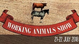 Working Animals Show