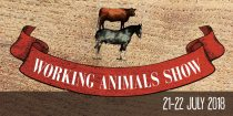 Wprking Animals Show