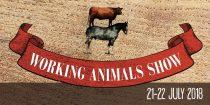 Wprking Animals Show