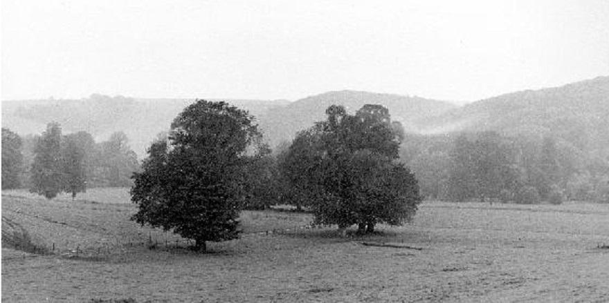 Museum site 1968