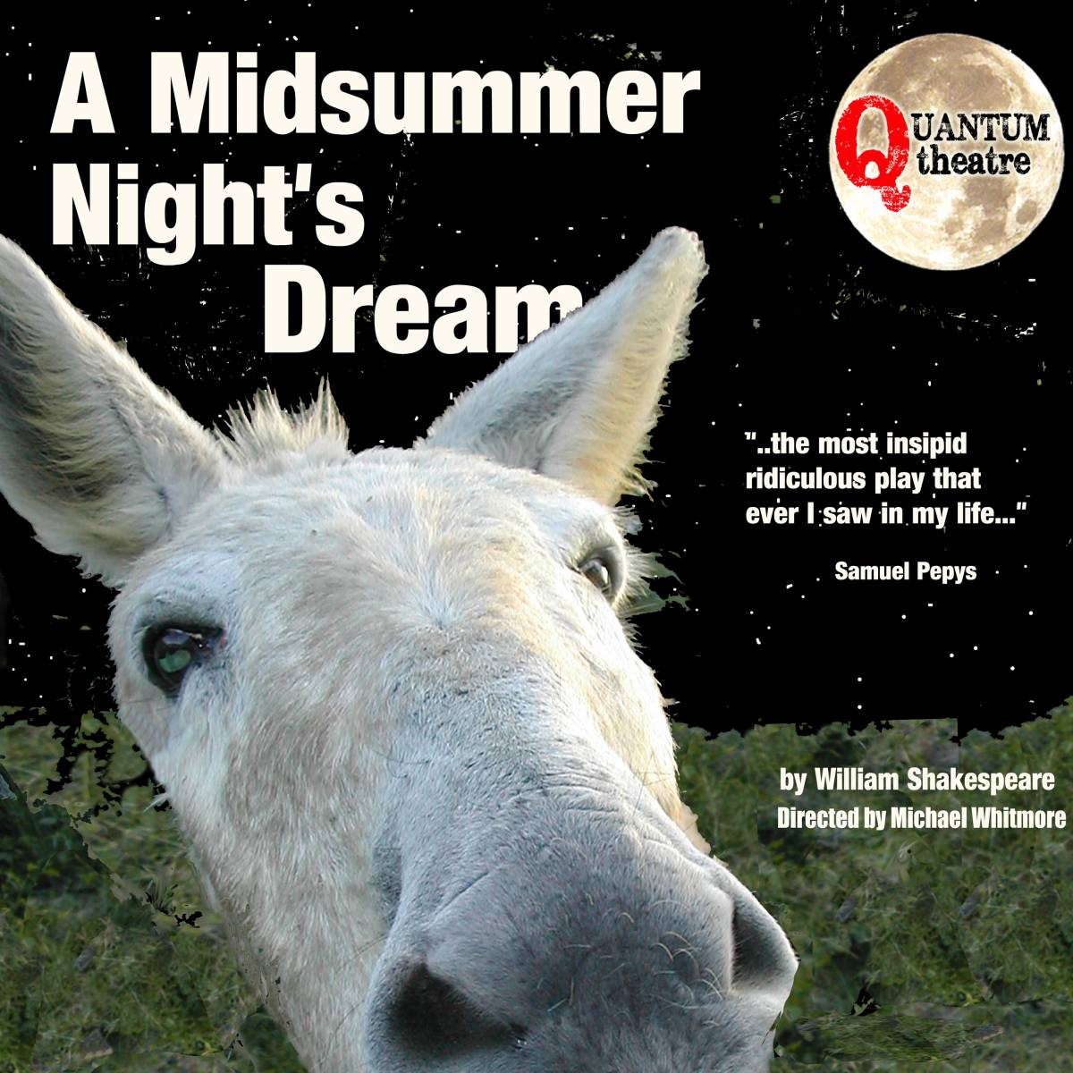 A Midsummer Nights Dream promo image