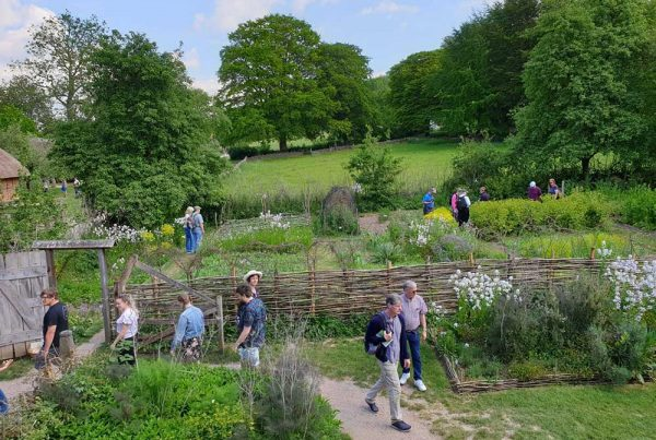 Popular gardens at the Weald & Downland Museum