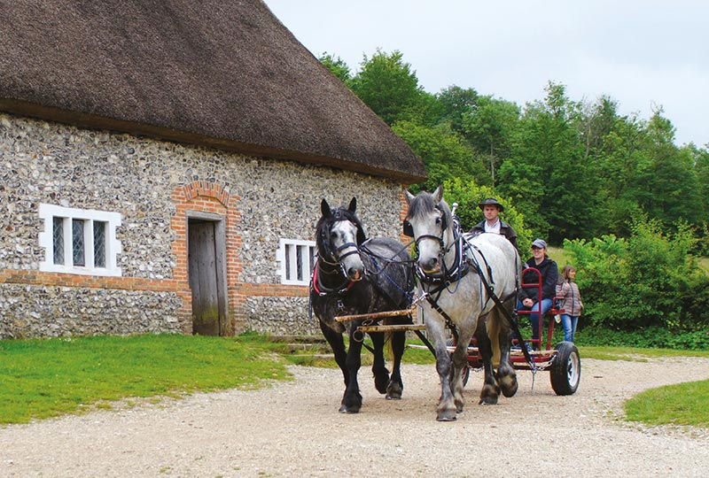 Discover rural life at the Weald & Downland Living Museum