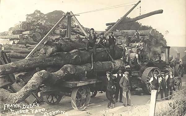 Wood processing timber yard