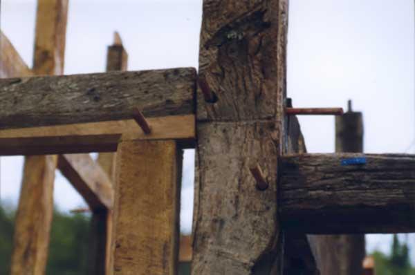Poplar thatch long shot