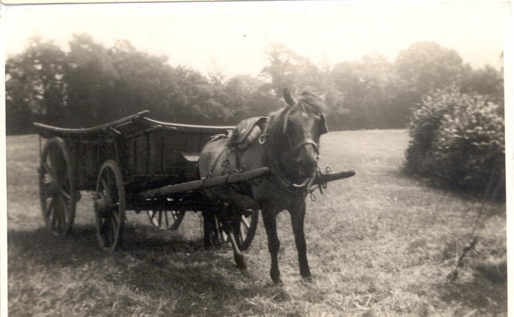Stevenson wagon