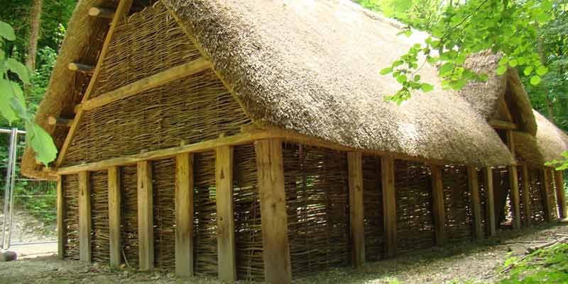 Saxon house construction: walls and thatched roof