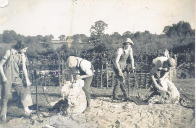 Snapelands Farm, Lodsworth