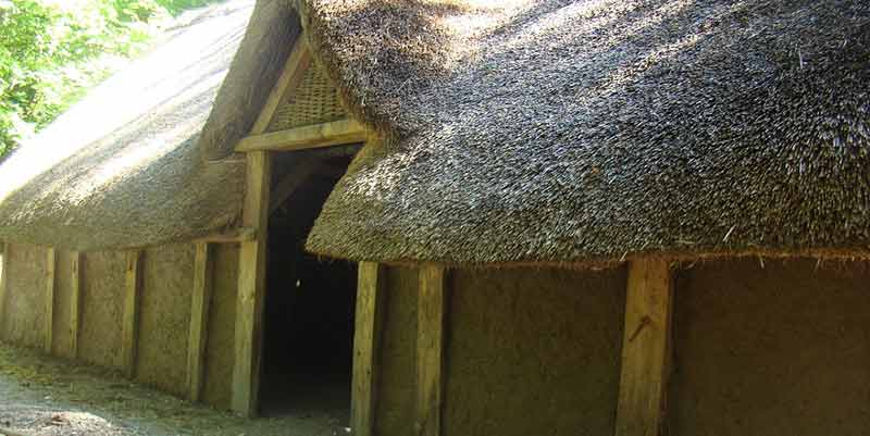 Saxon house construction: thatch and doorway