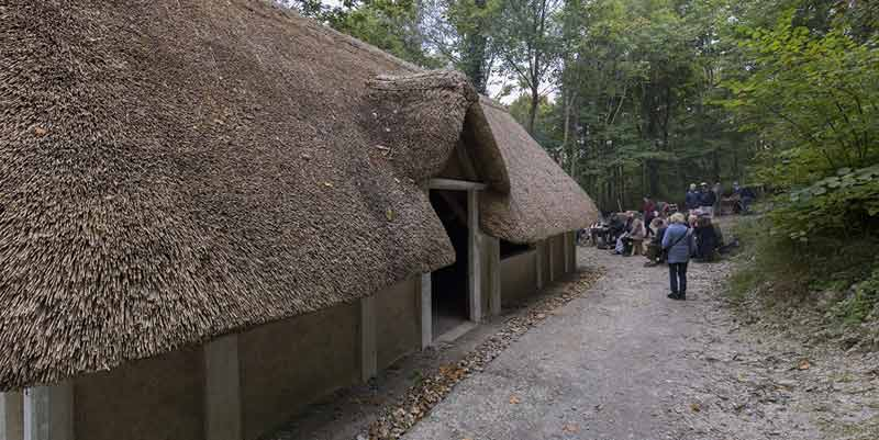 Saxon house construction: opening day