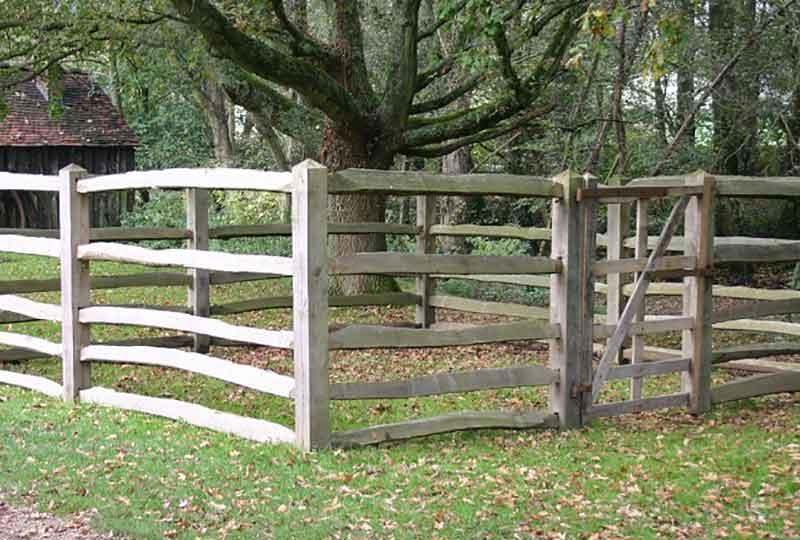 Animal Pound from Walton Heath