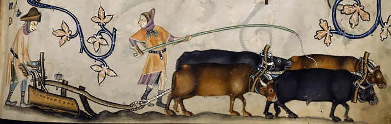 Ploughing, from the Luttrell Psalter (by permission of The British Library)