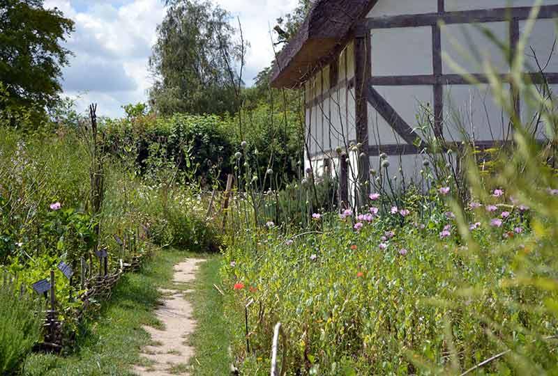 Poplar Cottage garden
