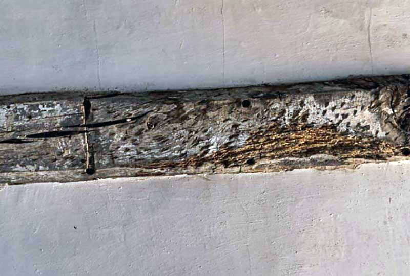 Timber damage in Reigate house