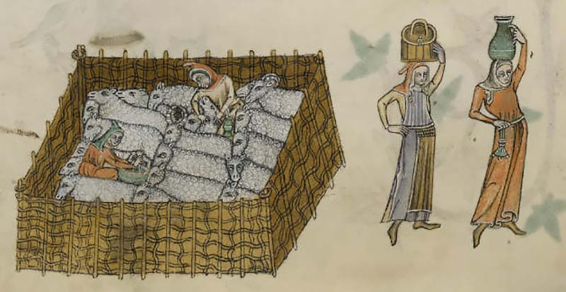 Sheepfold from the Luttrell Psalter (by permission of The British Library)