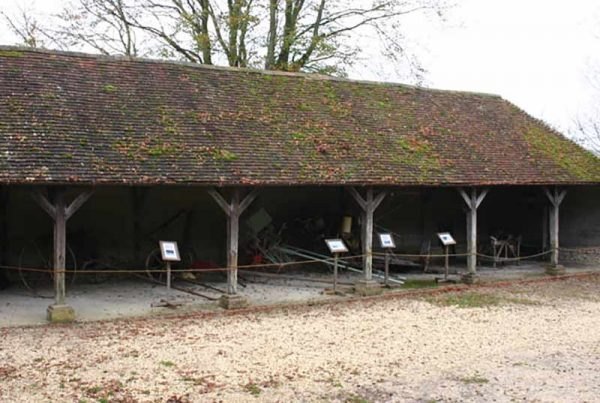 Sussex cattle shed