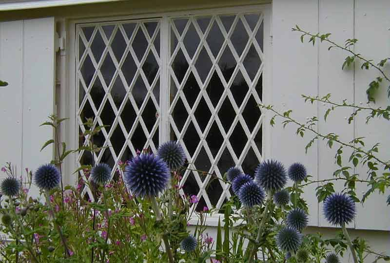 Toll cottage window with teasles