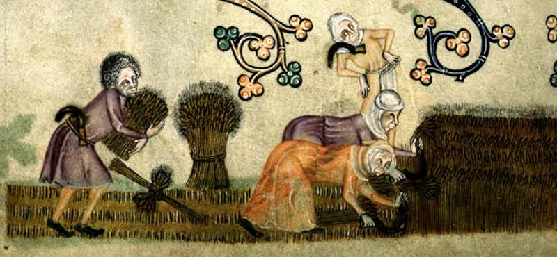 Women reaping (by permission of The British Library)