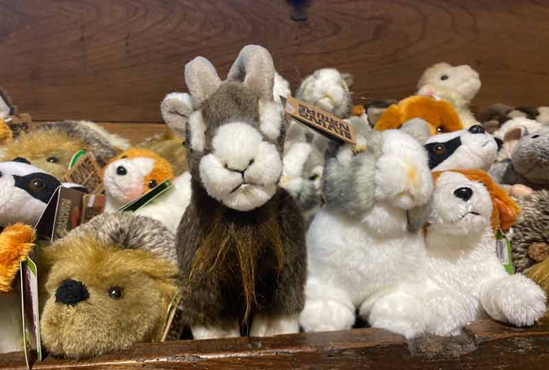 Museum gift shop cuddly toys