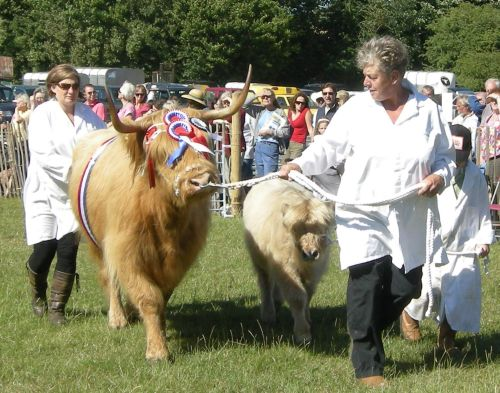 Rare Breeds winners on the move