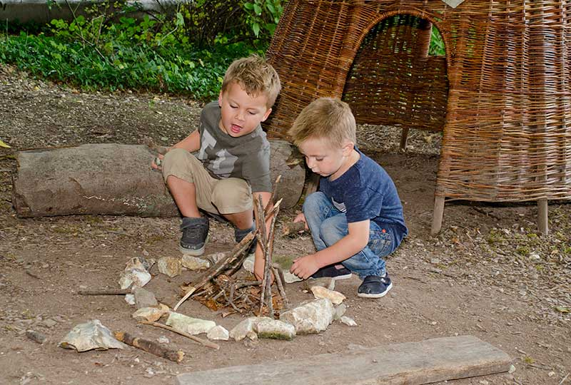 Half Term activities: Natural World