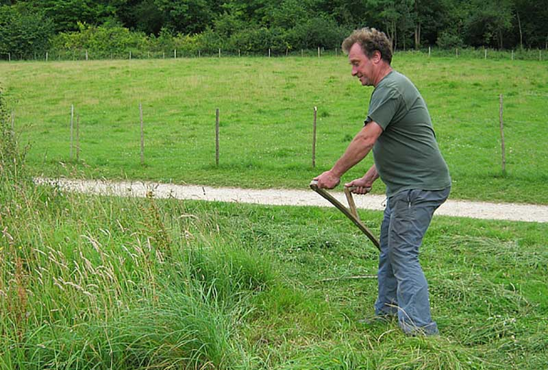 Learn to mow using a scythe