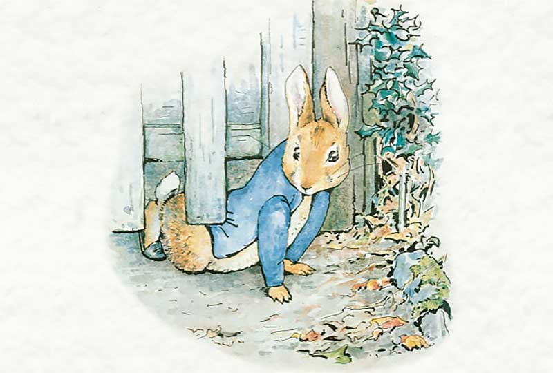 The Tale of Peter Rabbit & Benjamin Bunny (Quantum Theatre)