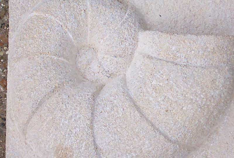 Stone carving ammonite