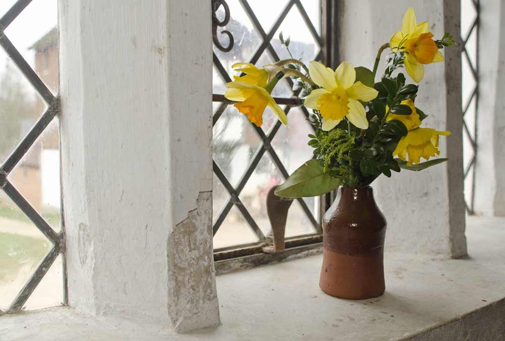 Daffodils on window sill