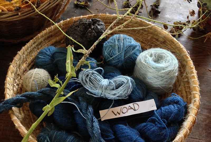 Woad dye wool in a basket