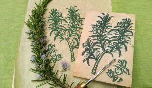 Herbal Woodcut