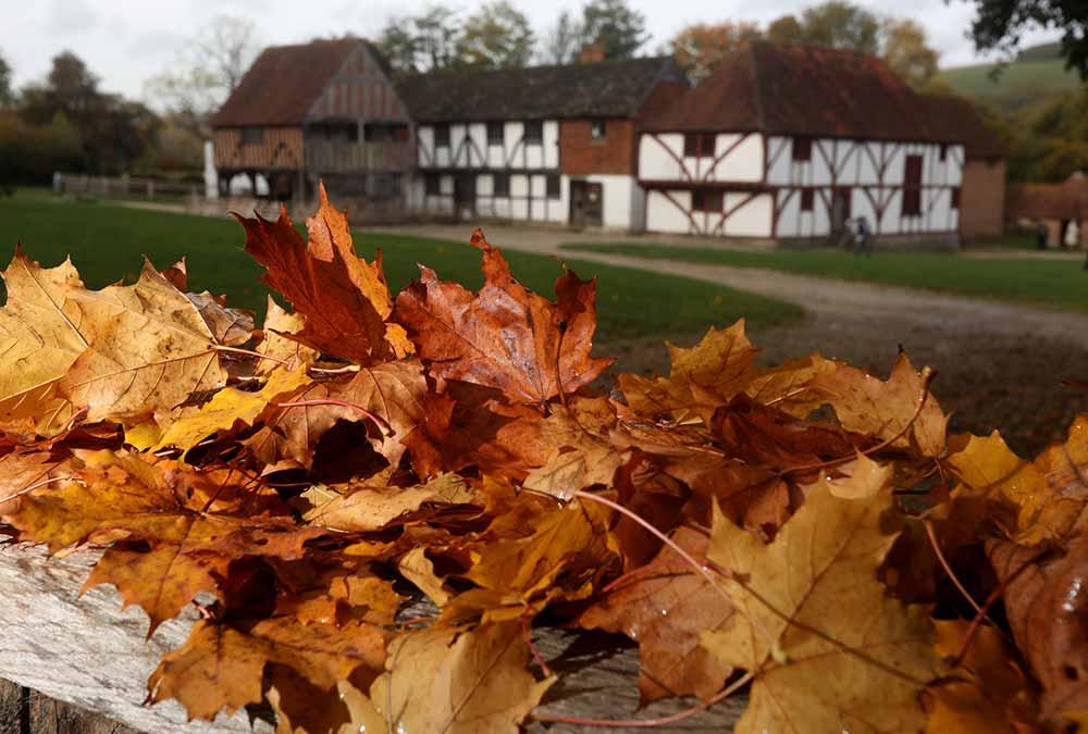 Musuem at Autumn image